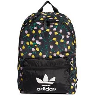 Ruksaky a batohy adidas  Graphic Backpack