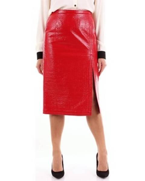 Červená sukňa N°21