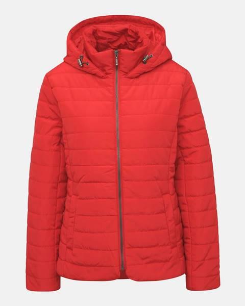 Červená bunda ZOOT